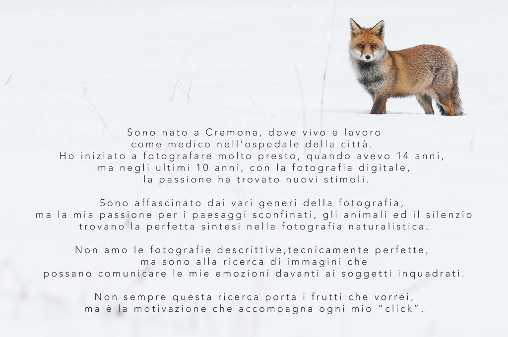 BIO_Italiano_volpe_big-1