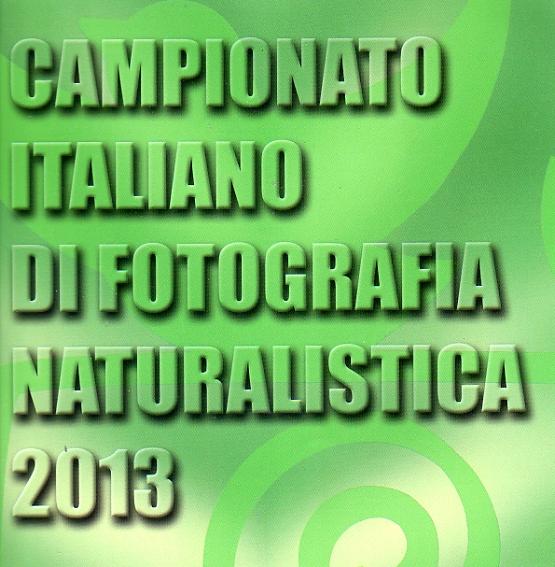 Campionatoitaliano2013003