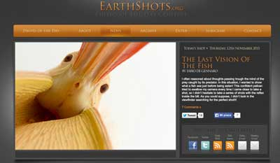 _earthshot-X-TheLastVisionOfTheFish-2